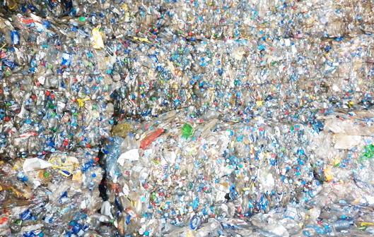 Oasis International-::-Plastic Scrap Pet bottle bale Pet washed